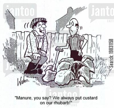 manure cartoon humor: 'Manure, you say? We always put custard on our rhubarb!'