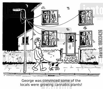illegal activities cartoon humor: George was convinced some of the locals were growing cannabis plants!