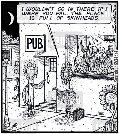 bar fights cartoon humor: Flower: 'I wouldn't go in there if i were you Pal. The place is full of Skinheads.'