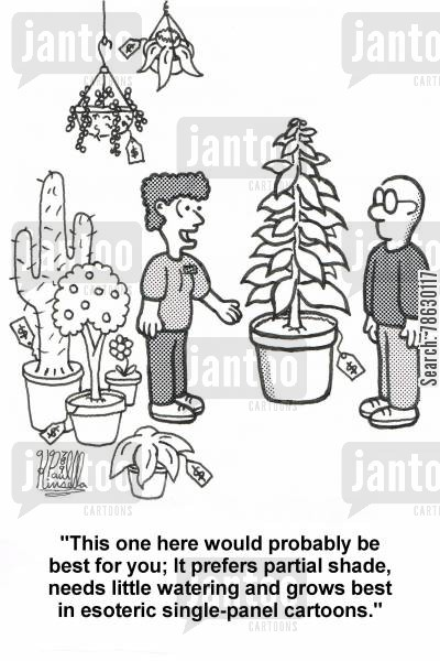 garden centre cartoon humor: 'This one here would probably be best for you; It prefers partial shade, needs little watering and grows best in esoteric single-panel cartoons.'