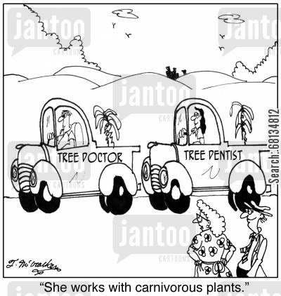 dentistry tooth cartoon humor: 'She works with carnivorous plants.'