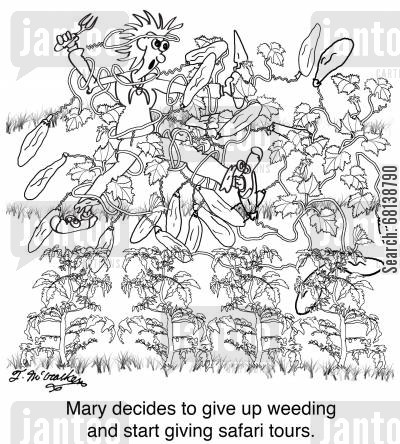 tour guide cartoon humor: Mary decides to give up weeding and start giving safari tours.