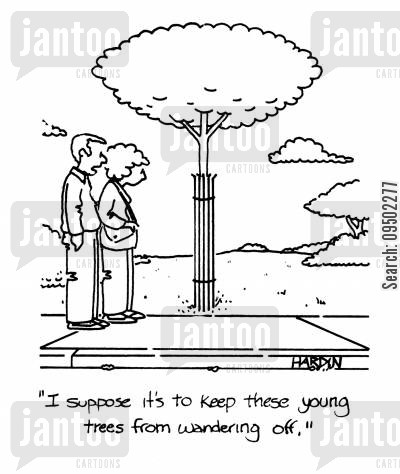 paths cartoon humor: 'I suppose it's to stop these young trees from wandering off.'