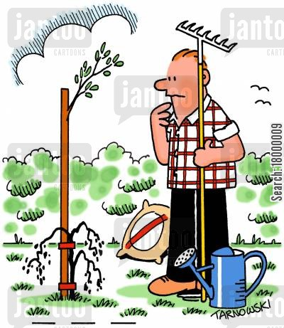 shrubs cartoon humor: Support cane sprouting while the plant dies.