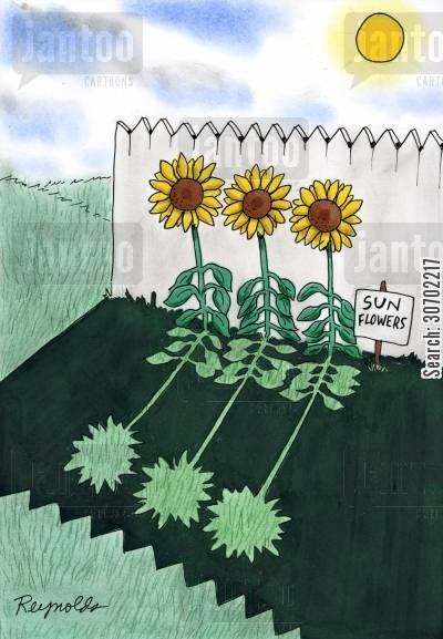 shade cartoon humor: Sun Flowers in the Shadows.