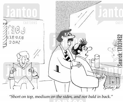 balds cartoon humor: Short on top, medium on the sides, and not bald in back.