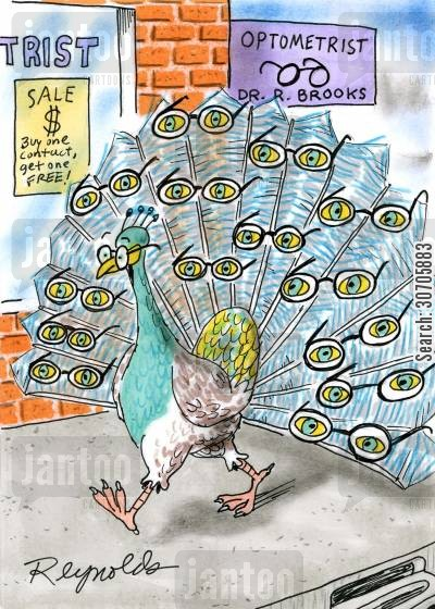peacock tails cartoon humor: Optometry