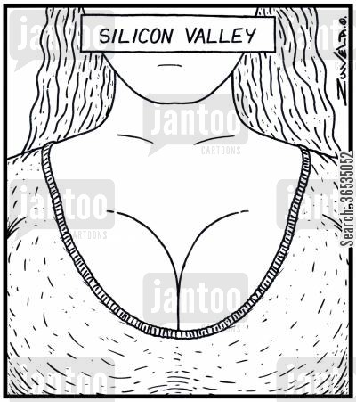 cleavage cartoon humor: Silicon Valley
