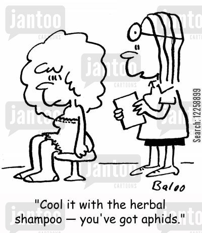 hair product cartoon humor: 'Cool it with the herbal shampoo -- you've got aphids.'