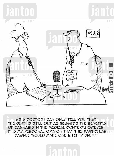 medical opinion cartoon humor: As a doctor I can only tell you that the jury is still out as regards the benefits of cannabis in a medical context,however it is my personal opinion that this particular sample would make one bitchin spliff.