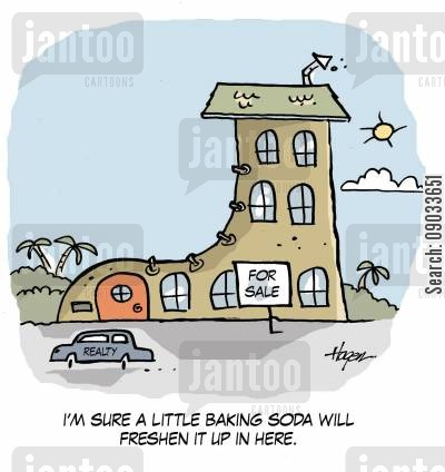 estate agents cartoon humor: 'I'm sure a little baking soda will freshen it up in here.'