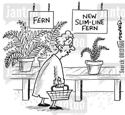 garden centre cartoon humor: Fern - New slim-line fern.
