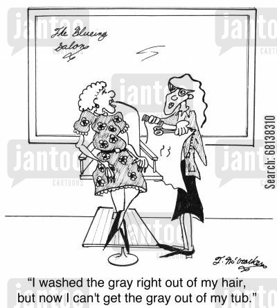 hair color cartoon humor: 'I washed the gray right out of my hair, but now I can't get the gray out of my tub.'