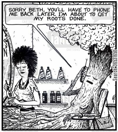 highlights cartoon humor: A tree on the phone: 'Sorry Beth, you'll have to phone me back later. I'm about to get my roots done.'