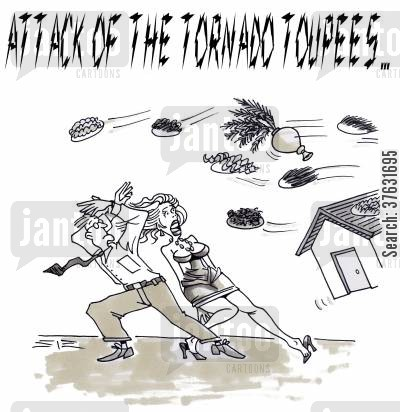 hairpieces cartoon humor: Attack Of The Tornado Toupees,,, toupees and other objects flying in wind storm