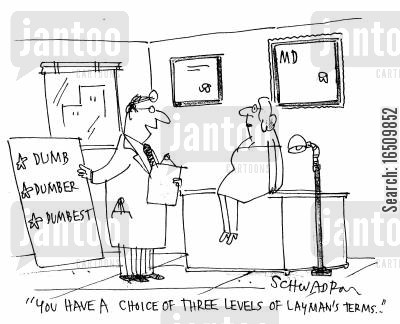 explaination cartoon humor: 'You have a choice of three levels of laymans terms.'