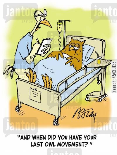 bowel movement cartoon humor: 'And when did you have your last owl movement?'