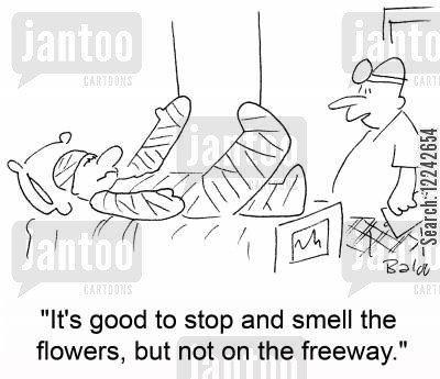 bodycast cartoon humor: 'It's good to stop and smell the flowers, but not on the freeway.'