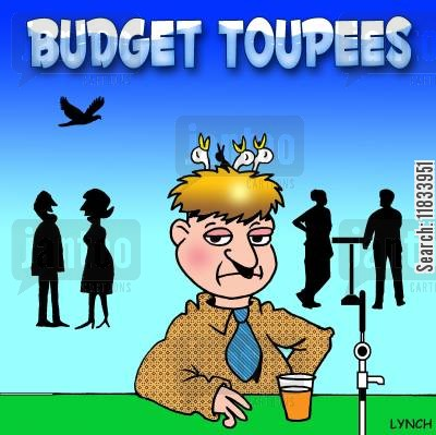 twig cartoon humor: Budget Toupee