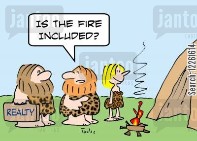 campfires cartoon humor: 'Is the fire included?'