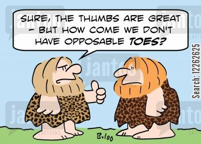 opposable thumbs cartoon humor: 'Sure, the thumbs are great -- but how come we don't have opposable toes?'