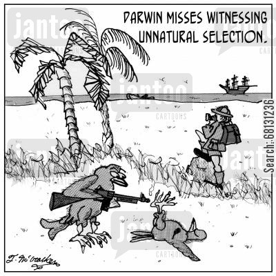 fittest cartoon humor: Darwin misses witnessing unnatural selection.