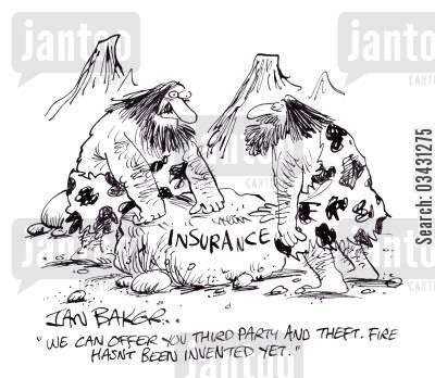 third party insurance cartoon humor: 'We can offer you third party and theft. Fire hasn't been invented yet.'