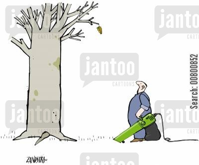 clearing leaves cartoon humor: Man with leaf-blower looking at tree with single leaf.