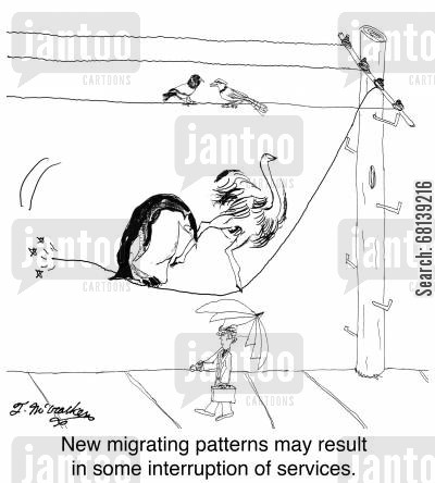 power company cartoon humor: New migrating patterns may result in some interruption of services.