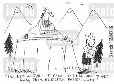 electric power line cartoon humor: 'I'm not a guru. I came up here just to get away from electric power lines.'