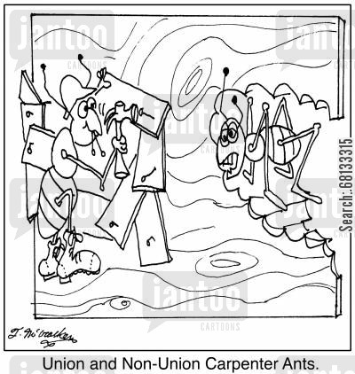 carpenter ants cartoon humor: Union and Non-Union Carpenter Ants.