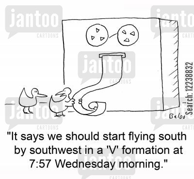 migratory cartoon humor: 'It says we should start flying south by southwest in a 'V' formation at 7:57 Wednesday morning.'