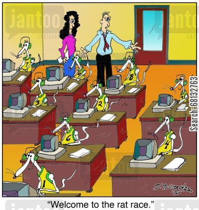 cubicals cartoon humor: 'Welcome to the rat race.'