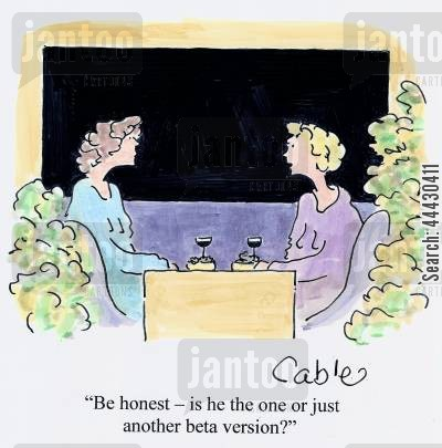 ideal man cartoon humor: 'Be honest - is he the one or just another beta version?'