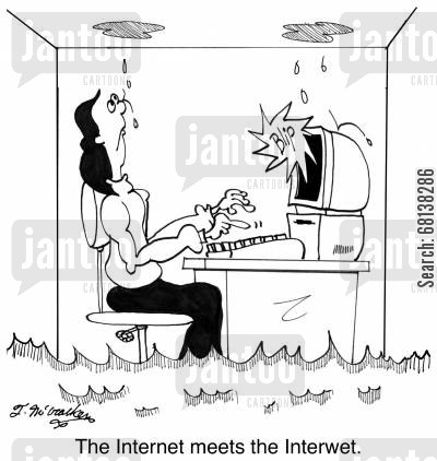 bathtub cartoon humor: The Internet meets the Interwet.