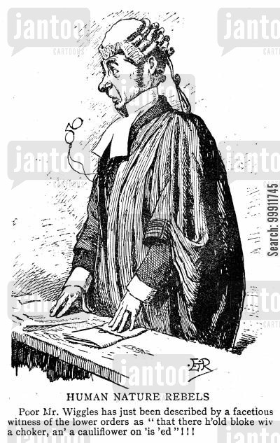 wig and gown cartoon humor: Barrister startled by a witness' description of him