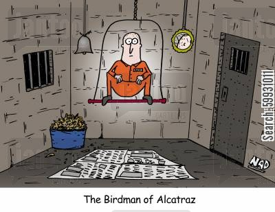 bird cages cartoon humor: The Birdman of Alcatraz - a guy in prison sitting on a perch with newspaper down, bird seed, a bell and mirror