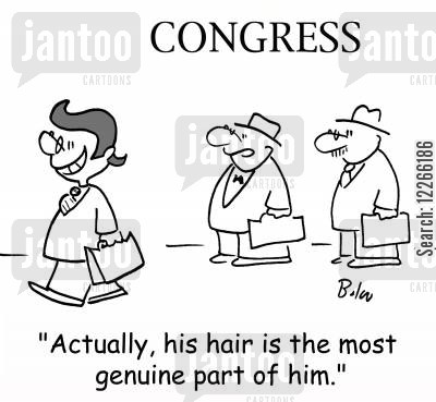 smarmy cartoon humor: CONGRESS, 'Actually, his hair is the most genuine part of him.'