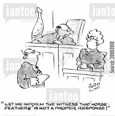 horse feathers cartoon humor: 'Let me inform the witness that 'horse-feathers' is not a proper response!'