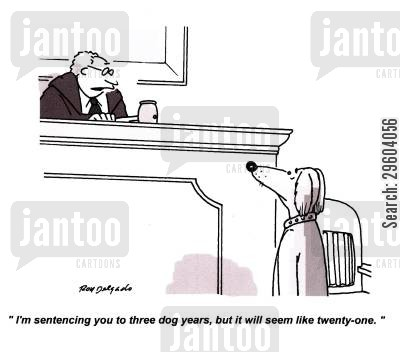 prison sentence cartoon humor: 'I'm sentencing you to three dog years, but it will seem like twenty one.'