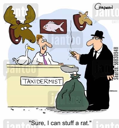 organised crime cartoon humor: 'Sure, I can stuff a rat.'