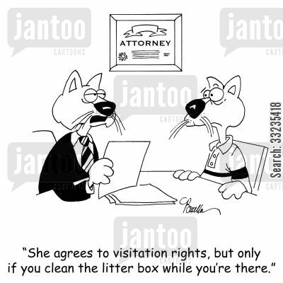 litter trays cartoon humor: 'She agrees to visitation rights, but only if you clean the litter box while you're there.'