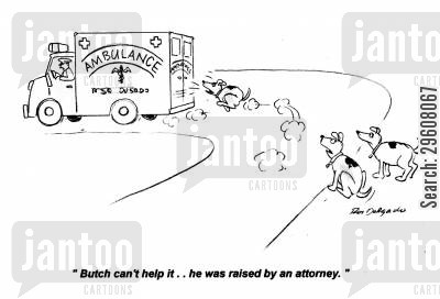 chasing cartoon humor: 'Butch can't help it... he was raised by an attorney.'