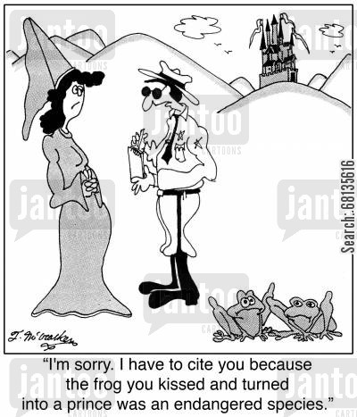 game wardens cartoon humor: 'I'm sorry. I have to cite you because the frog you kissed and turned into a prince was an endangered species.'