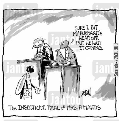 bit cartoon humor: The Insecticide Trial of Mrs P Mantis - Sure I bit my husband's head off. But he had it coming.