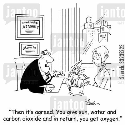 legal settlements cartoon humor: 'Then it's agreed. You give sun, water and carbon dioxide and in return, you get oxygen.'