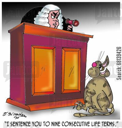life sentences cartoon humor: 'I sentence you to nine consecutive life terms.'