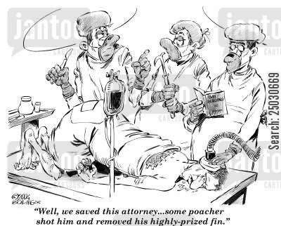 fin cartoon humor: 'Well, we saved this attorney...some poacher shot him and removed his highly-prized fin.'