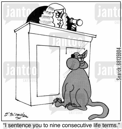 life imprisonments cartoon humor: 'I sentence you to nine consecutive life terms.'