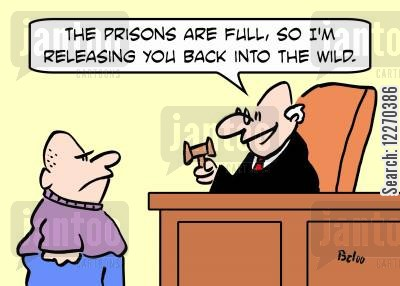 justice service cartoon humor: 'The prisons are full, so I'm releasing you back into the wild.'